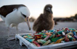 Утилизация пластмассы